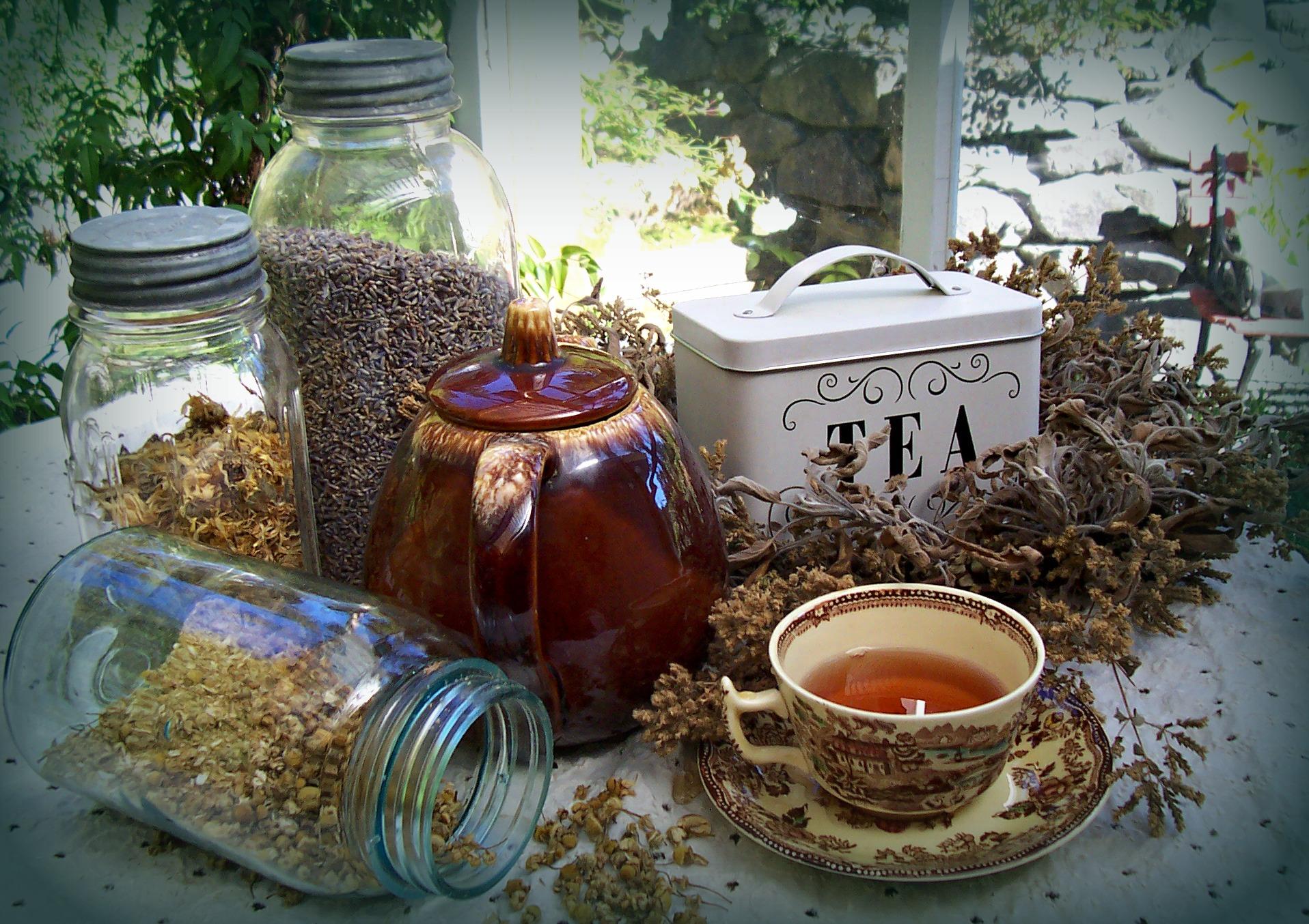 Last minute gift idea wrap up tea time creative gardener - Backyard patio design ideas to accompany your tea time ...