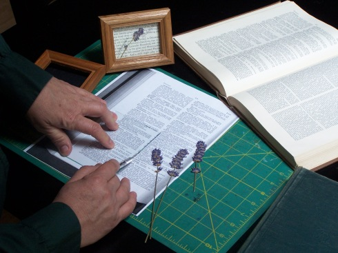 Make a copy of a page from an old horticultural dictionary.  Use a card stock parchment paper. Center the glass from the frame and cut around it with an craft knife.
