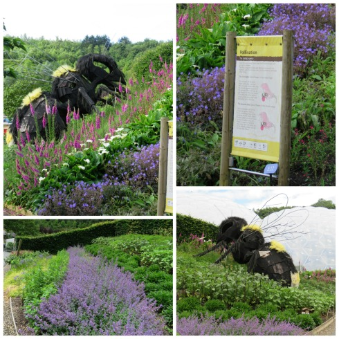 pollination garden