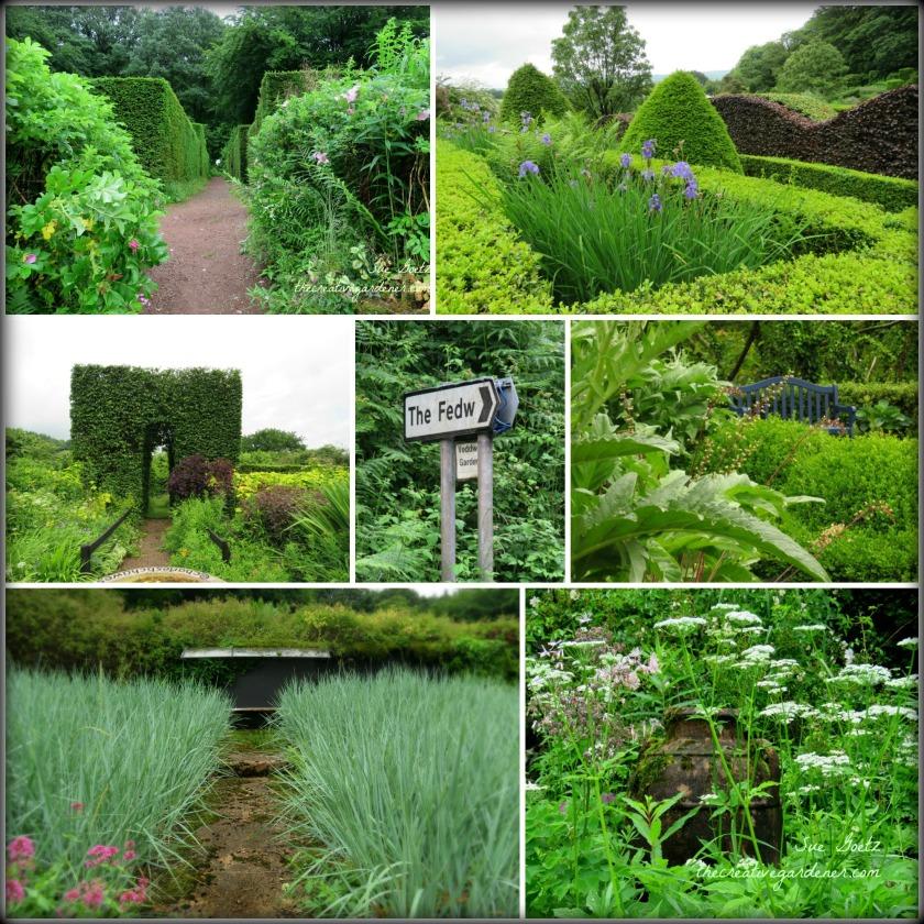 veddw garden mix.jpg