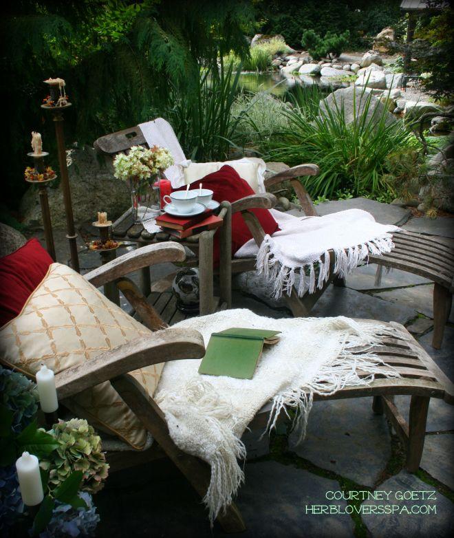 cindy harp garden