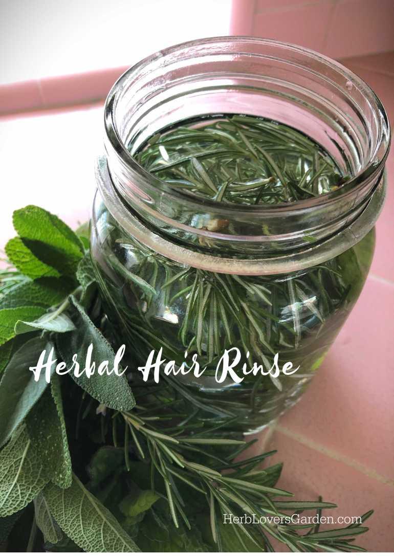 herbal hair rinse LOW MG_9943